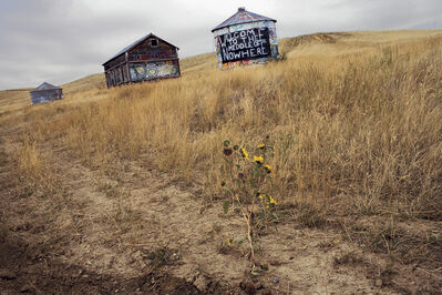 William Albert Allard, 'In the middle of nowhere, Montana 2006', 2006