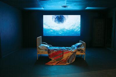 Camille Henrot, 'Million Dollars Point', 2011