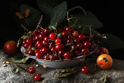 Paulette Tavormina, 'Red Cherries and Plums, after G.G.', 2011