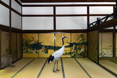 Karen Knorr, 'Way of the Path, Ryoan-ji Temple, Kyoto ', 2015