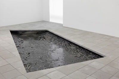 Cristina Iglesias, 'Phreatic Zone III', 2015