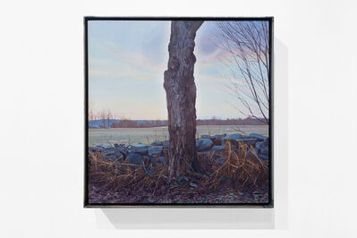 Trey Friedman, 'Trees On A Line Felled', 2012