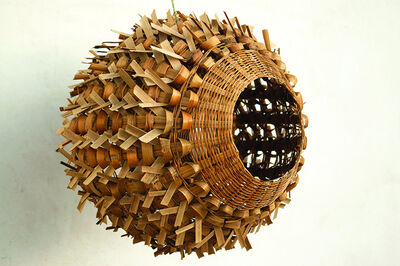 Oax-i-fornia, 'Blowfish Lamp', 2008