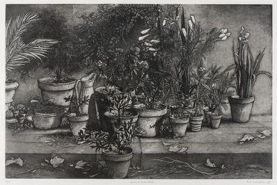 Erik Desmazières, 'Précis d'horticulture', 1991