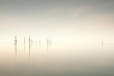 Michael Levin, 'Weir', 2013