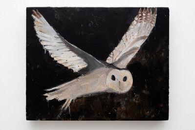 Richard Lewer, 'Masked owl', 2020
