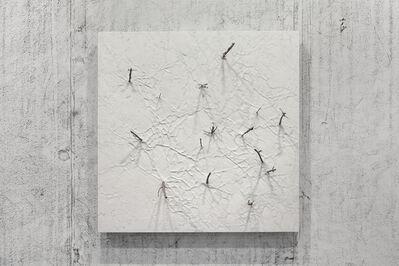 Giuseppe Penone, 'Corpo di pietra - rami,', 2016