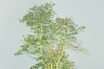 Zhang Hui (b. 1969), 'The Tree', 2015
