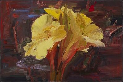 John Hartman, 'Yellow Lily in Denman's Garden', 2002