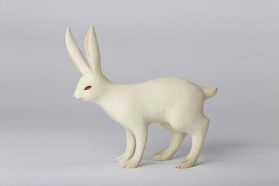 Yoshimasa Tsuchiya, 'Rabbit', 2016