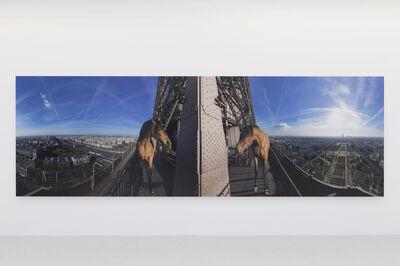 Paola Pivi, 'Yee-haw (paris)', 2015