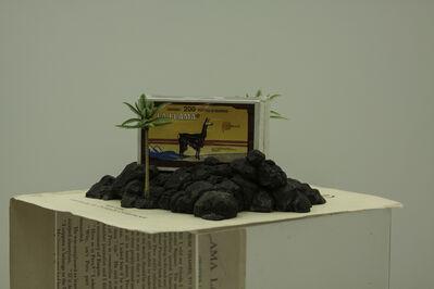 Fernando Gutierrez Huanchaco, 'Lama land', 2015