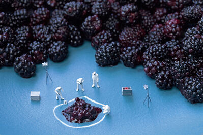 Christopher Boffoli, 'Blackberry C.S.I', 2013
