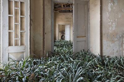 Gohar Dashti, 'Home', 2017