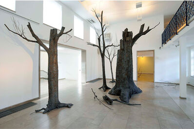 Mirsad Herenda, 'O.T. ( Forest)', 2011-2012