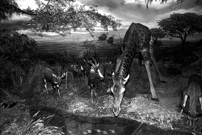 Wang Dongwei 王东伟, 'Drinking water', 2012