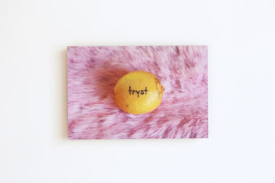 Amanda Wachob, 'Tryst (tattooed lemon)', 2015
