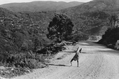 Henri Cartier-Bresson, 'Epirus, Greece', 1990s