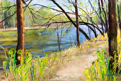 Takeyce Walter, 'Day 8: Early Spring on the Boquet River', February 2020