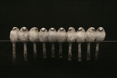 Adam Binder, 'Ten Long Tailed Tits'