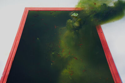 Thiago Rocha  Pitta, 'A funda morada', 2020