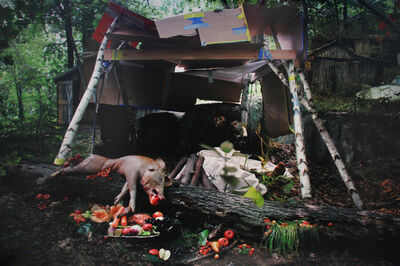 Anthony Goicolea, 'Still Life with Pig', 2005