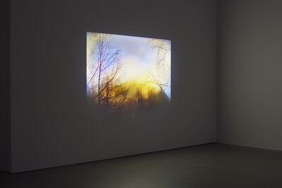 Dodda Maggý, 'There, There', 2013