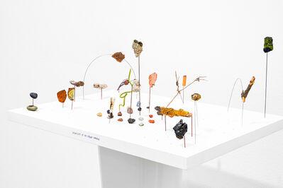 Andrea Acosta, 'Cosmology of an Urban Garden', 2018