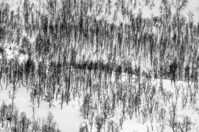Jeanne Hauser, 'Arctic Winter', 2019