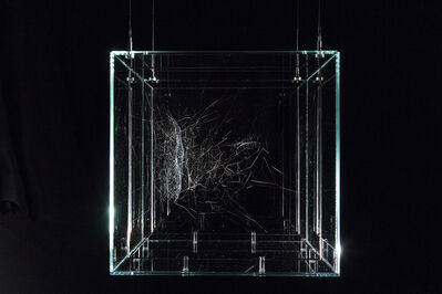 Tomás Saraceno, 'Hybrid semi-social solitary 37 Cassiopeiae built by: a duet of Cyrtophora citricola - two weeks, a solo Lariniodes sclopetarius - one week, rotated 90°', 2018