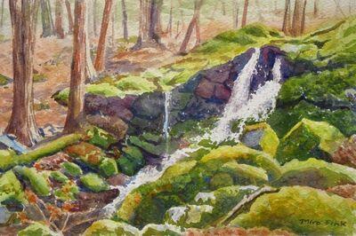 Mira Fink, 'Mossy Waterfall, Shaupeneak', 2020