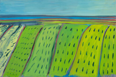 Elizabeth Enders, 'Untitled- Fields', 2019
