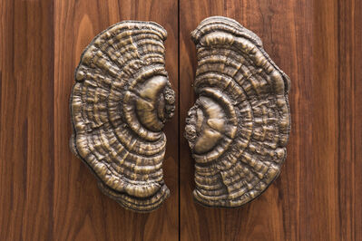 Erin Sullivan, 'Flora Series, Bronze Mushroom Door Pulls, USA', 2018