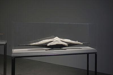 John Roloff, 'L/S Ship (Calera Orchid)', 2019
