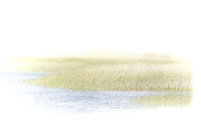 Myra Hafetz, 'In The Water Grasses'