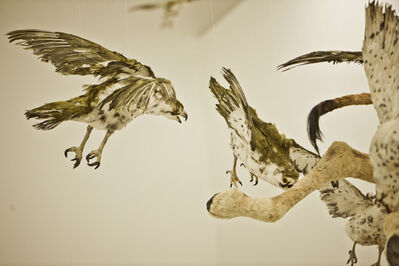 Cai Guoqiang 蔡国强, 'Flying Together', 2011
