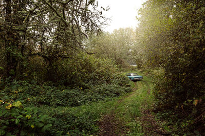 Holly Andres, 'River Road - Milepost 38', 2015