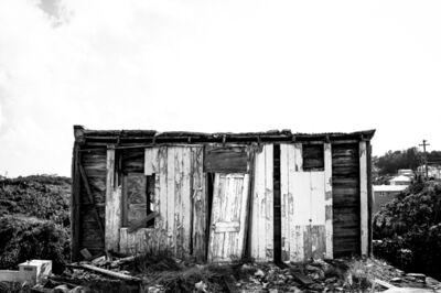 Jayde Gibbons, 'Tarnished, Hamilton, Bermuda', 2018