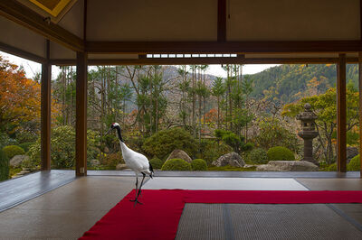 Karen Knorr, 'Journey to the Great Sage , Jikko –in Temple, 0hara', 2015