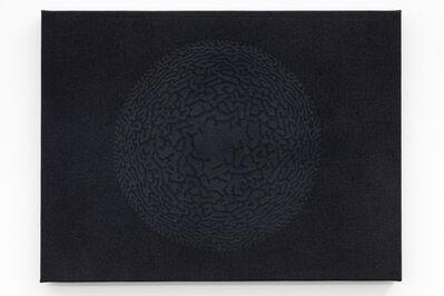 Céleste Boursier-Mougenot, 'solidvideo blackmandalavirus 65', 2008