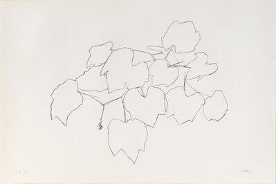 Ellsworth Kelly, 'Grape Leaves I'