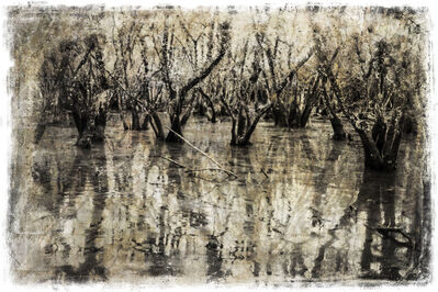 Russell James, 'Waterland', 2014