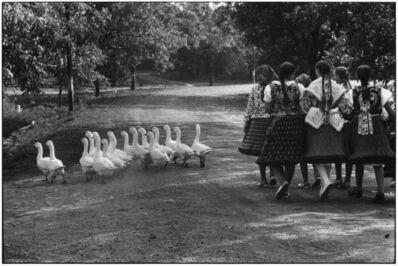 Elliott Erwitt, 'Hungary', 1964