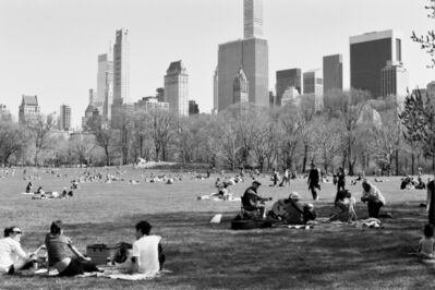 John Andrulis, 'Sheep Meadow, Central Park ', 2018