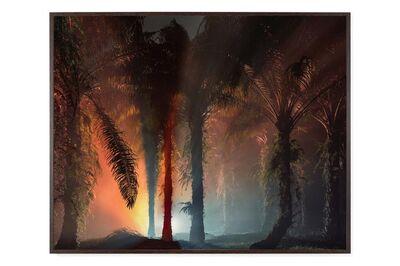 Julian Charrière, 'An Invitation to Disappear - Sanggau', 2018