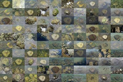 Amalia Caputo, 'Every Being is an Island II', 2020