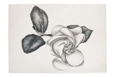 Giacomo Porzano, 'Black Rose', 1972