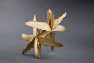 Maximilian Verhas, 'Rolling Starfish', 2010