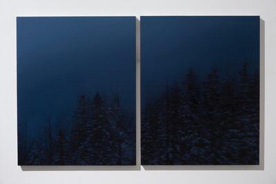 Rebecca Partridge, 'Forest Blizzard Night (Diptych)', 2015