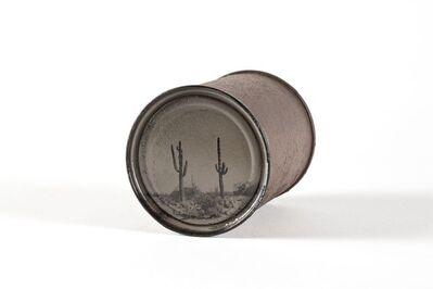 David Emitt Adams, 'Saguaros #23', 2014